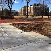 UCA Green Space, UCA campus, eco Construction